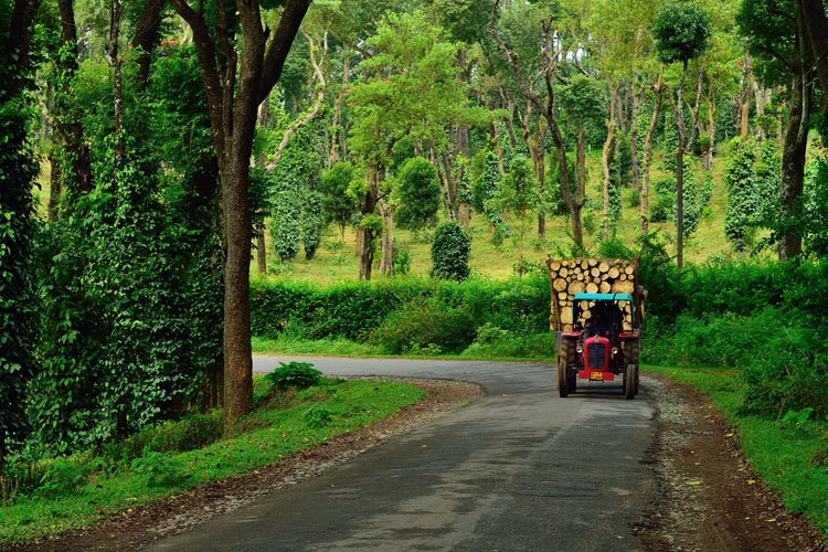 COORG – A SIP OF NATURE