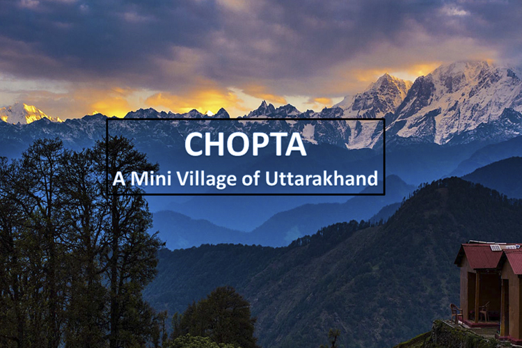 Why Chopta Could Be the Perfect Vacation Place for New Year