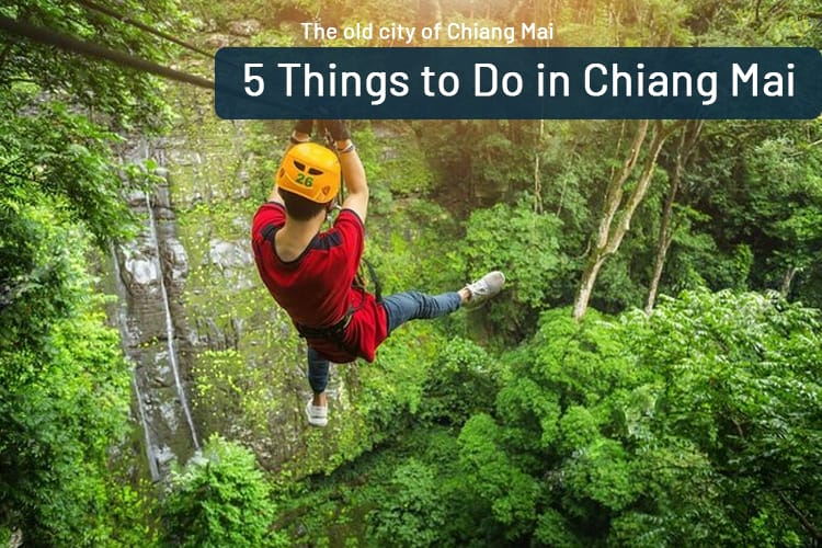 5 Things to Do in Chiang Mai