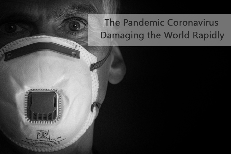 The Pandemic Coronavirus: Damaging the World Rapidly